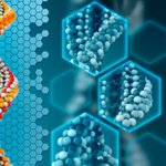 Image for the Tweet beginning: Researchers have expanded the genetic