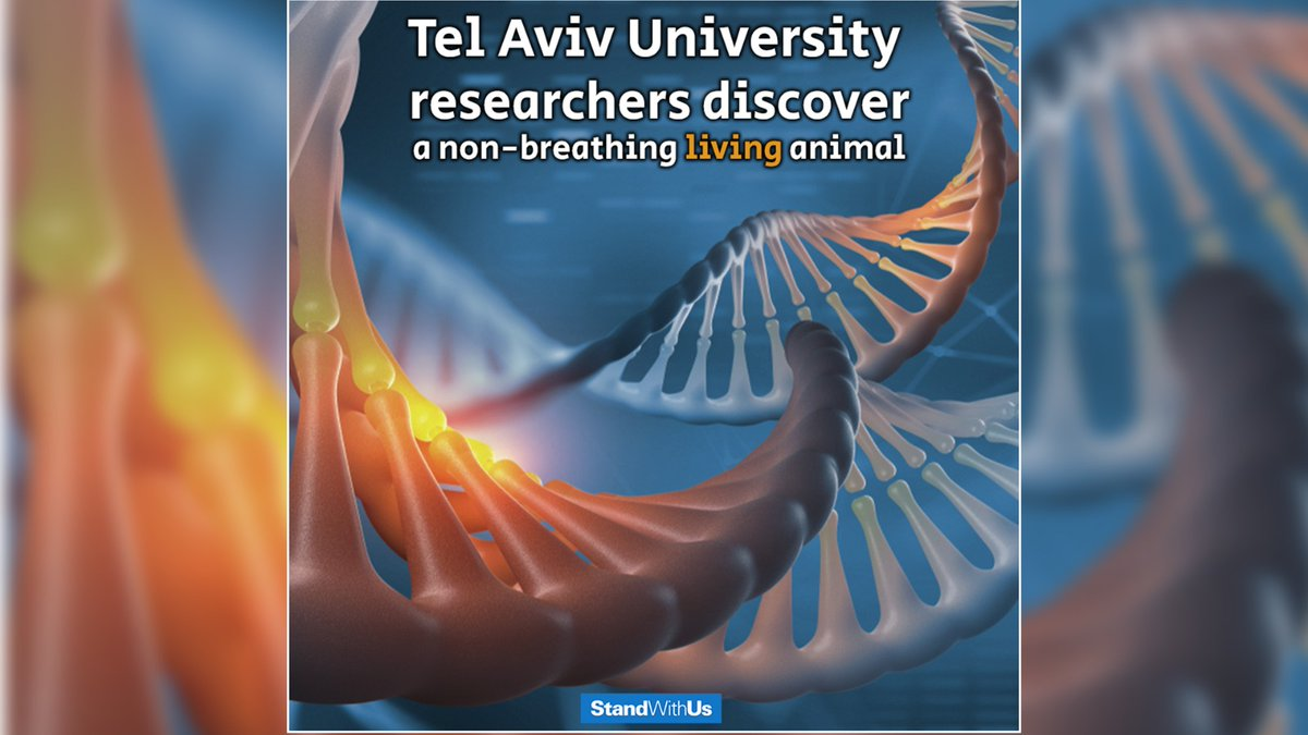 Wow! Researchers at Tel Aviv University have stumbled across a non-breathing animal. This discovery challenges the current understanding of the animal world!  Read more:  https://www. jpost.com/Israel-News/Te l-Aviv-University-researchers-discover-a-non-breathing-living-animal-618875   … <br>http://pic.twitter.com/9gPha1c68S
