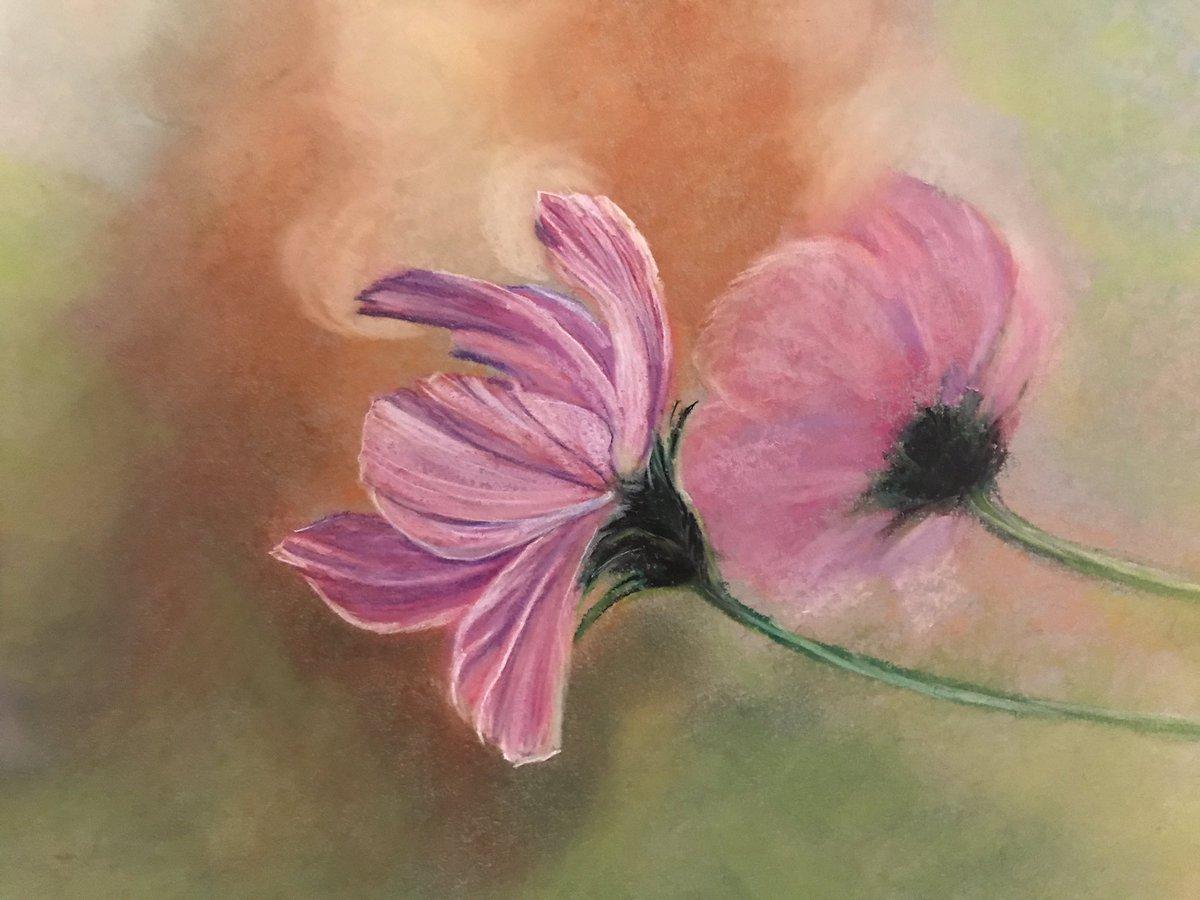 Inspired by Leo Delibes The Flower Duet  #flower #flowers #flowersofinstagram #nature #life #beautiful  #art  #pretty #earth #mothernature #poetry #science #fall #macro  #abstract #vine #earthday #beautiful #artwork #flowerart #wildflowers #flowerduet #cosmos #opera