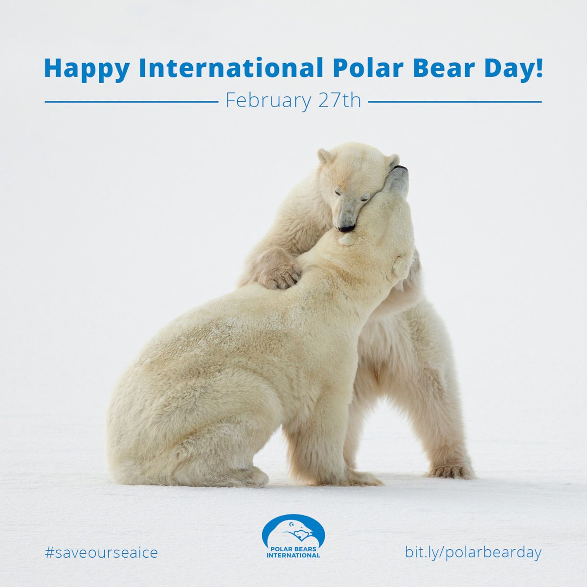 Happy #InternationalPolarBearDay! Find out more about the work being done to help protect Polar Bear populations from the affects of climate change-  https:// ywpf.org/animals-we-sup port/polar-bears/  …   Text 'YWPF' to 70331 to Donate £3 to the Yorkshire Wildlife Park Foundation.<br>http://pic.twitter.com/lHjei4Tjqn