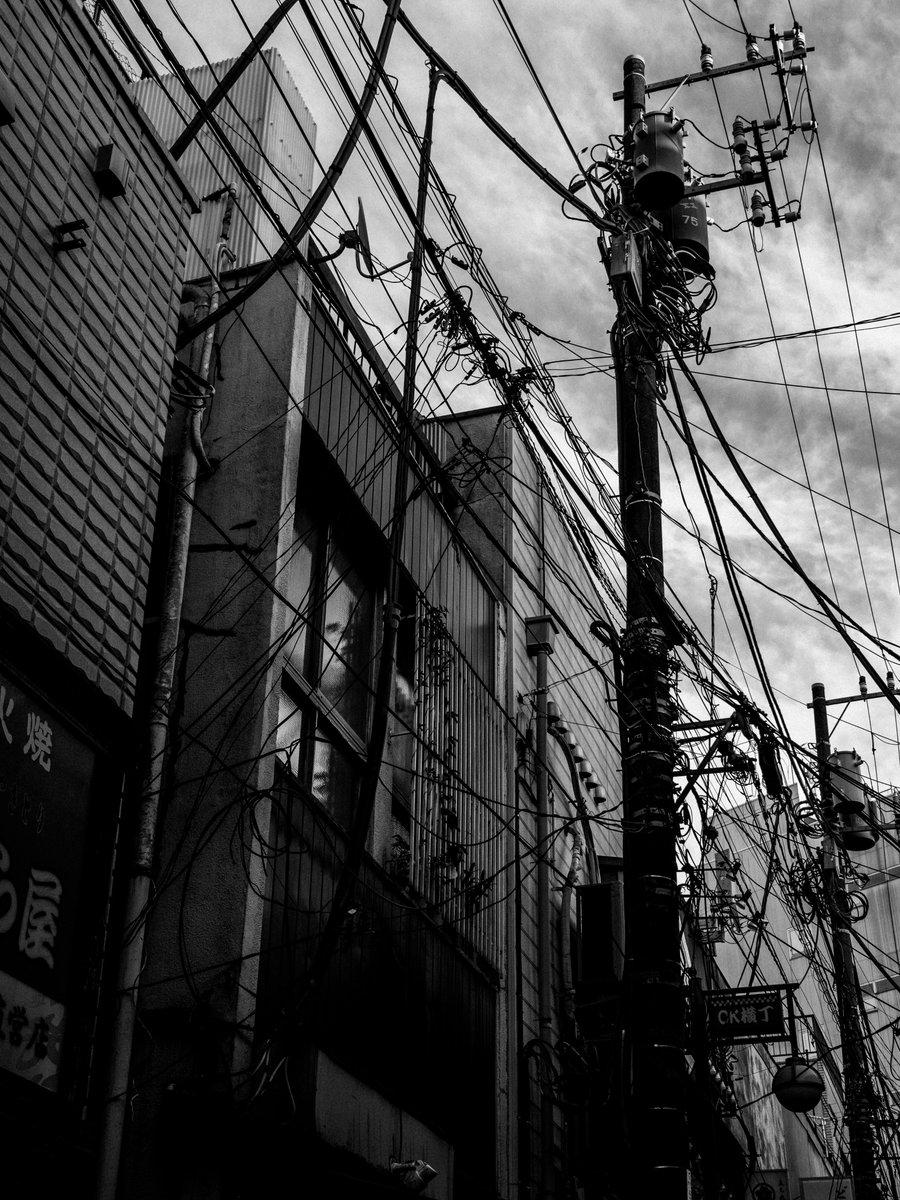 蜘蛛の巣や蚕の繭もすごいけど、人間の電線もすごいぞッ! #streetphotography #photography #blackandwhitephotography #bnwphotography #monochrome  #スナップ写真 #モノクロ写真 #写真好きな人と繋がりがたい #赤羽  電線, 2020pic.twitter.com/tNEOTc3d9V