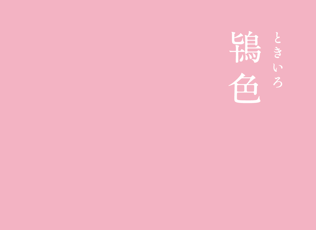 鴇色(ときいろ)|にっぽんのいろ日本を象徴する大切な鴇の羽の色です(*^^*)淡く可愛らしいピンク色は、昔から若い女性に好まれてきました。▼にっぽんのいろのインスタ