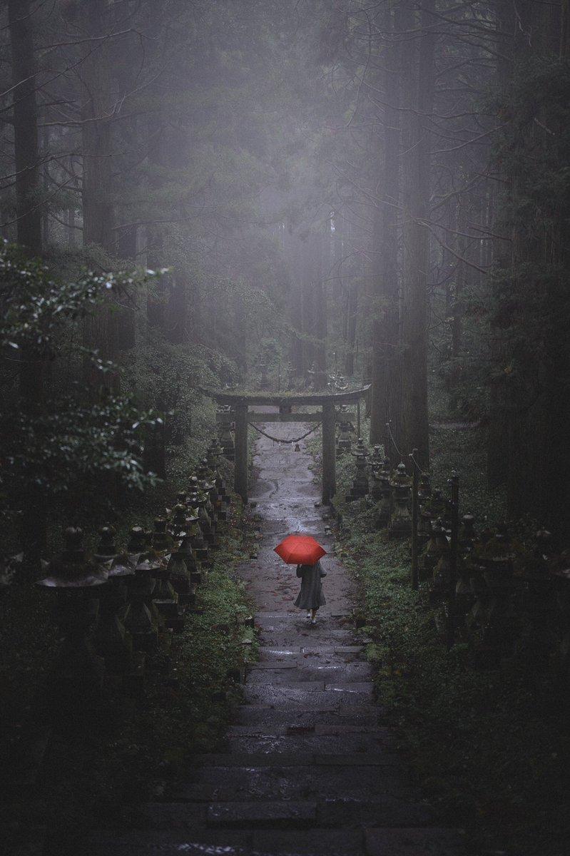 日本の神秘的な風景展#ツイッターで楽しむ展覧会