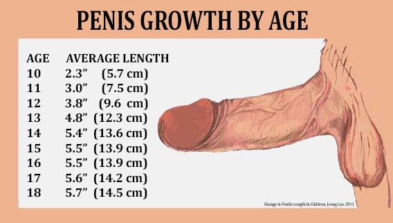 Can prp injections really give you a bigger penis