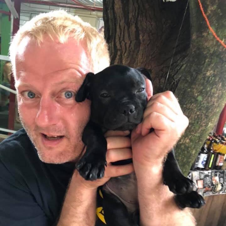 The #Staffy Number 1 favourite UK family dog, #staffies love natural chews & treats  RT @markhillary: I got a new Staffie #Staffordshirebullterrier #SerraNegra #sbt #staffie #staffy #filhote #puppypic.twitter.com/jUXkG5qFKG