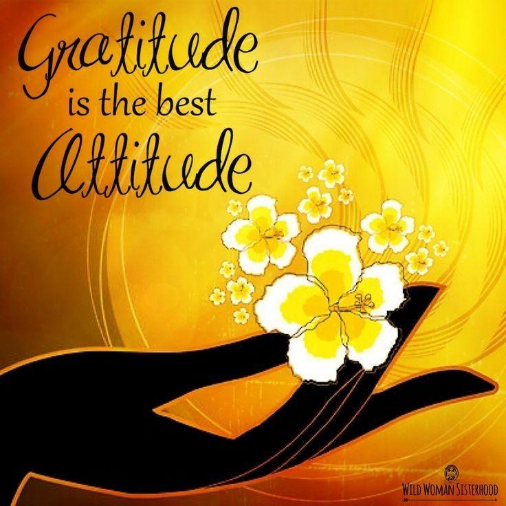 #attitudematters #MindBodyThoughts  #innerbeauty #JoyTrain  #FamilyTrain  #GoldenHearts  #StarfishClub  #ThinkBIGSundayWithMarshapic.twitter.com/3ZxheqWDRk