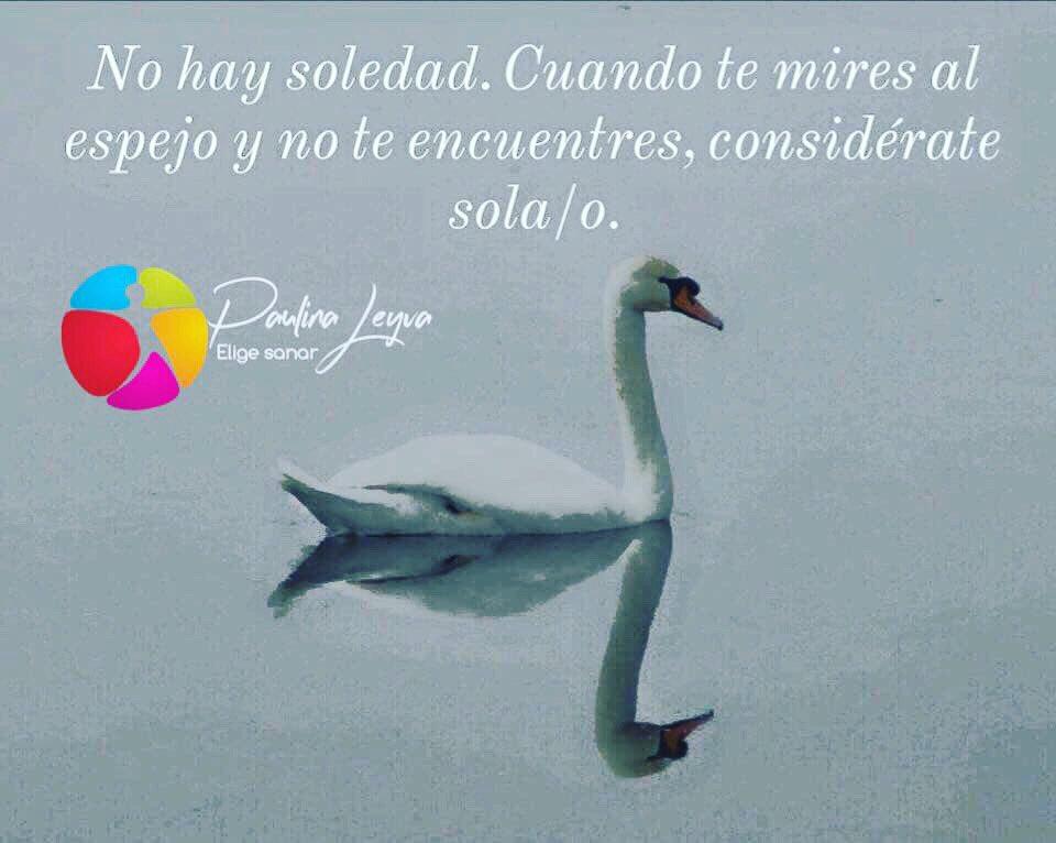 #psicoterapia #salud #bienestar #paz #HablemosDeSaludMental #crecimiento #herramientas #parapensar #inspiración #comunicación #concienciadesalud #eligesanarhoy 🌱