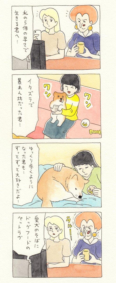 【今日の4コマ漫画】シンデレラ115 (キューライス)