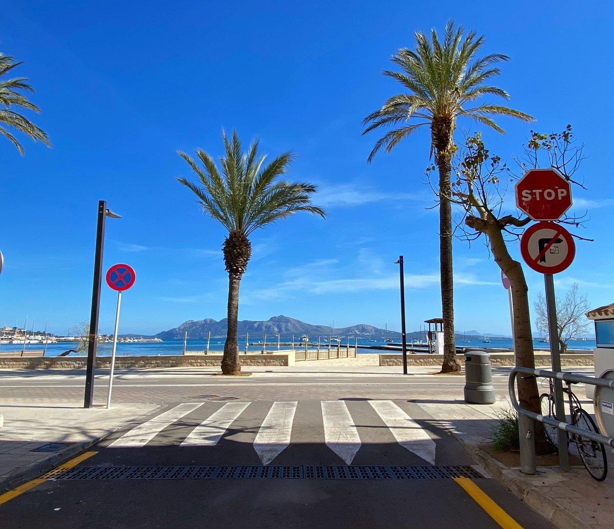 Work views #OQServiceCourse #OQRideFast #SportsMassage #work #cycling #triathlon #massage #my #shop #tienda #bici #bicycle #sol #sun #beautiful #bonito #day #dias #bikelife #PuertoPollensa #mallorcacycling #igers #Mallorcapic.twitter.com/J3G5fk0LFg