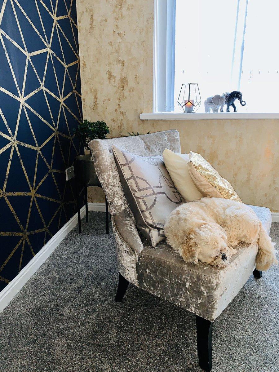 My happy place #interiordesign #sleepypup #luckyelephants pic.twitter.com/aHdDQddmqS