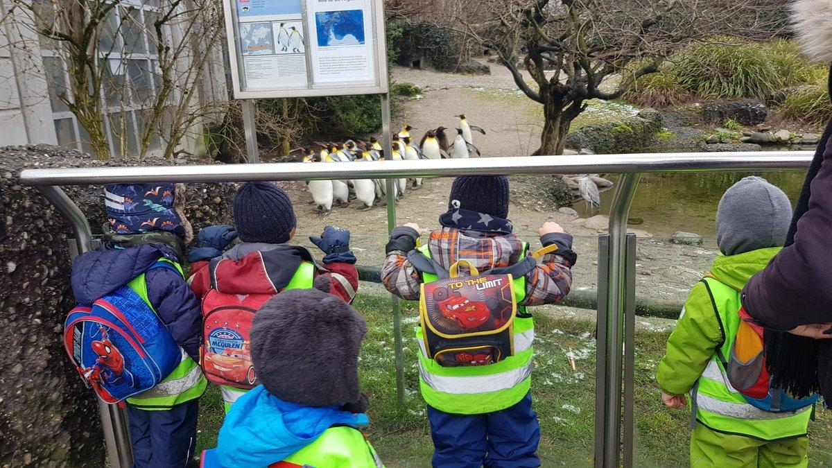 Pinguine beobachten #kinder #familie #lebenmitkindern #mama #eltern #baby #liebe #elternzeit #mamaleben #family #familienleben #mamaalltag #papa #mamablogger #love #Eltern #momlife #babys #lebenmitkind #mommy #kleinkind #lebenalsmama #familienzeitpic.twitter.com/optpl7vHeZ