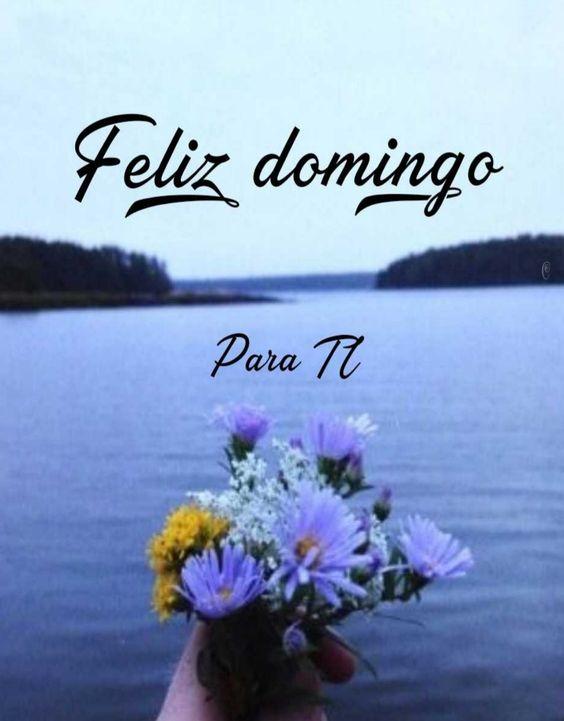 """Raúl Frias en Twitter: """"A través del mar mi pensamiento llega hasta donde  estás con flores que te presento ojalá en mi puedas pensar feliz Domingo te  deseo tu envíame tu mirar #"""