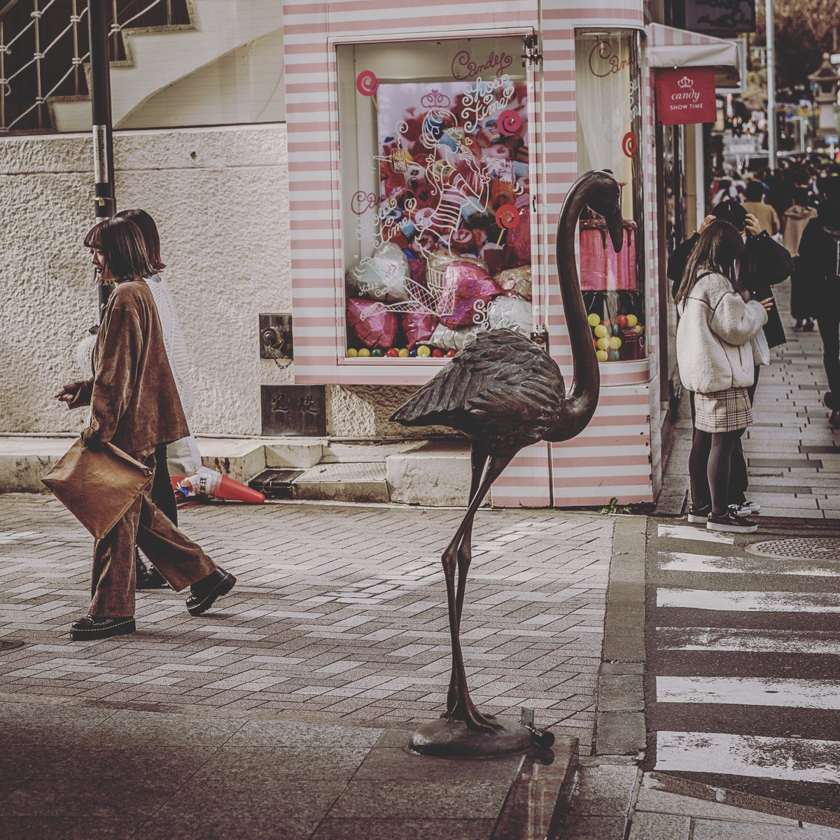 tokyo  - there was a flamingo  - #キリトリセカイ #カメラ女子 #thinkverylittle  #lucecurated  #spjstreets #ifyouleave #oftheafternoon #createexploretakeover #knowthismind  #東京カメラ部 #streetlevelphotography #n8zinepic.twitter.com/Z2FSGjezPl