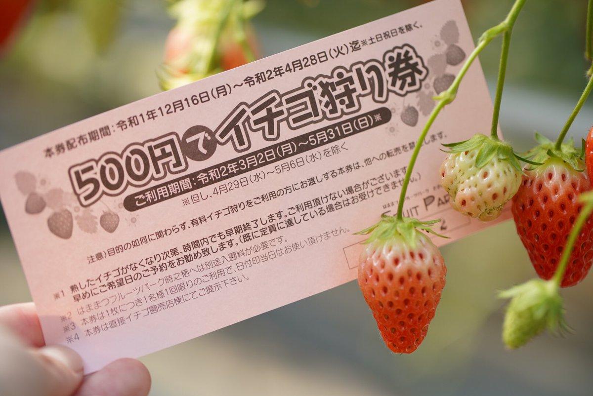 いちご 狩り 浜松