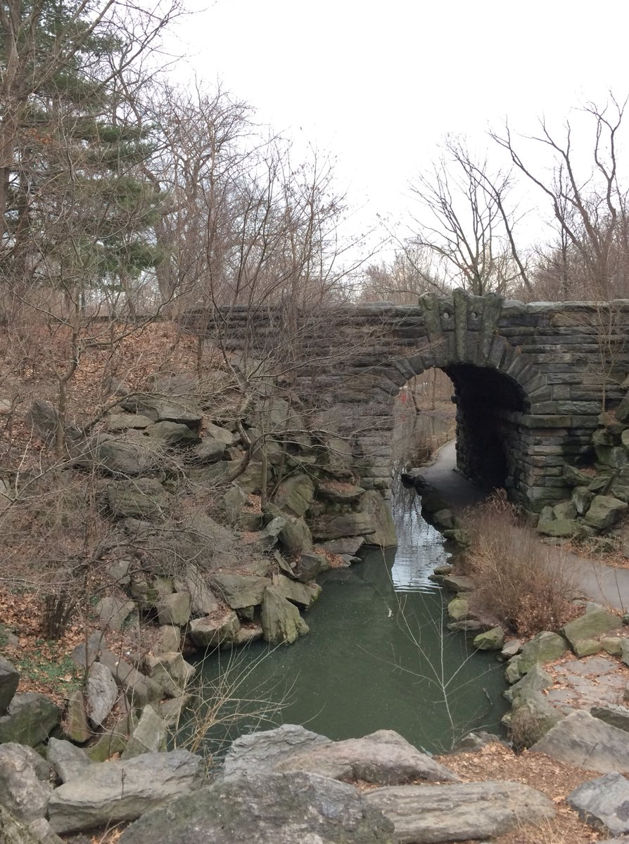 Mini-lake, named 'The Pool,' and 'Glen Span Arch' bridge, in the northwestern part of Central Park, NYC, photographed by yours truly a few weeks ago  (My #SaturdaySightings - belatedly, on a Sunday - post No. 64) #nycmoment #nycsightpic.twitter.com/NBPQ5cn7mU