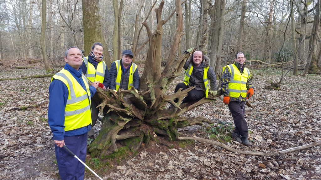 Our fantastic group of client gardeners on one of their trips to the Vyne where they help to conserve the forest.