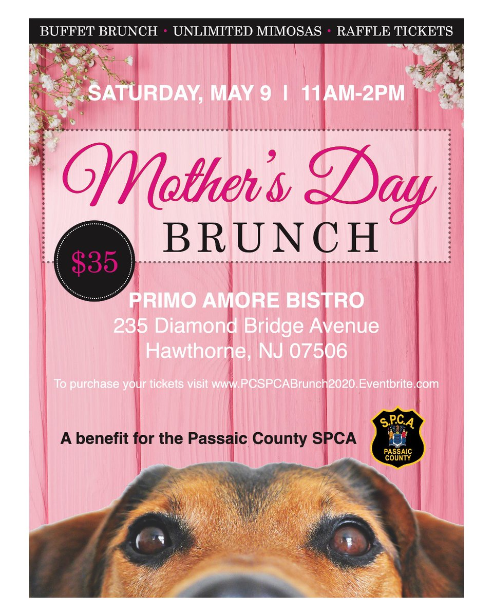 Come join us for our annual #MothersDay brunch at Primo Amore Bistro on Saturday, May 9 from 11:00 am - 2:00 pm. Purchase tickets here:  https://t.co/UN96OjGz8J #Pawsitivity #Dogs #Cats https://t.co/DHbP5ao7mn