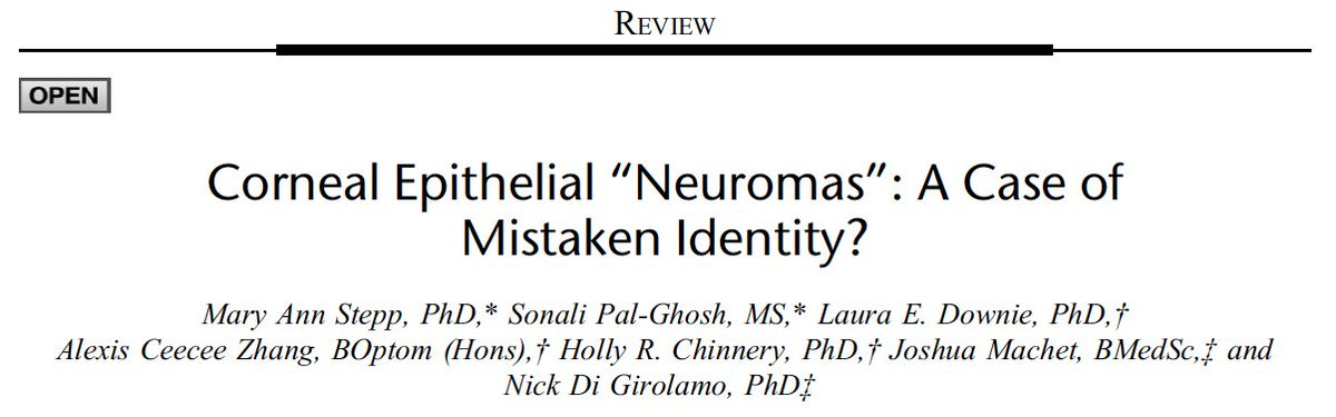 "Corneal Epithelial ""Neuromas"": A Case of Mistaken Identity? Cornea https://t.co/u9u3ccItXT #IVCM #FrontTearlab #Cornea #ConfocalMicroscopy @UniMelbDOVS @UniMelbMDHS @holly_chinnery @alexisceecee https://t.co/rutyJ7VY4u"