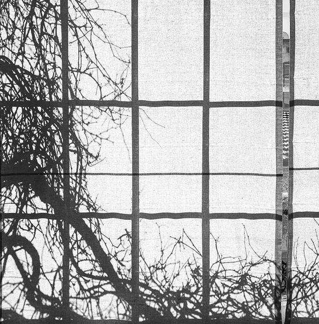 #bianconero #biancoenero #biancoeneroitalia #bn #bw #bnw #blackandwhite #blackandwhitephotography #winter #shadow #silhouette #milano #milan #shootingday #shotoniphone #shotoniphone11pro https://ift.tt/3cAo0V9pic.twitter.com/1bx6qTuv9W