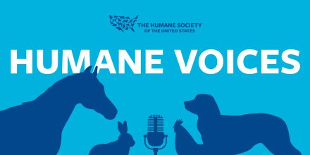 NEW PODCAST: Life on the front lines of animal rescue!🎤 This episode, we chat with the leader of our Animal Rescue Team about his recent work rescuing koalas from the Australian wildfires, dogs from cruelty cases, and how YOU can get involved. https://t.co/c1TuCCHPgg https://t.co/2VzFJQjaAx