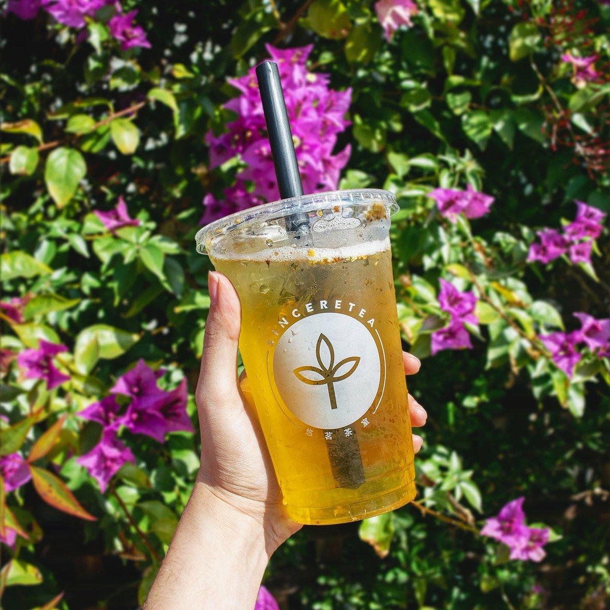 Sunbathe with a Osmanthus Lychee tea in your hand.  . . #tea #yellow #happinessinacup #sunshine #spring #march #fruit #teaaddict #teashop #milktea #boba #bobamilktea #pretty #osmanthus #lychee #refreshing #floral #sinceretea #specialtea #downtownsj #downtownwalnutcreekpic.twitter.com/cXeDbQE7rG
