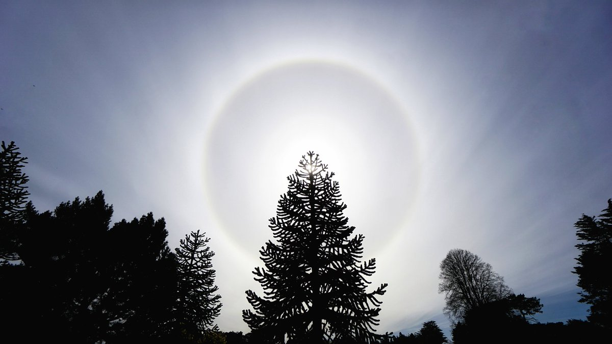 Nice ring around the #sun today. 6th March 2020. #Invercargill #NewZealand   @weatherwyou @EarthandClouds @CloudAppSoc @StormHourpic.twitter.com/3bIWBIo7DT