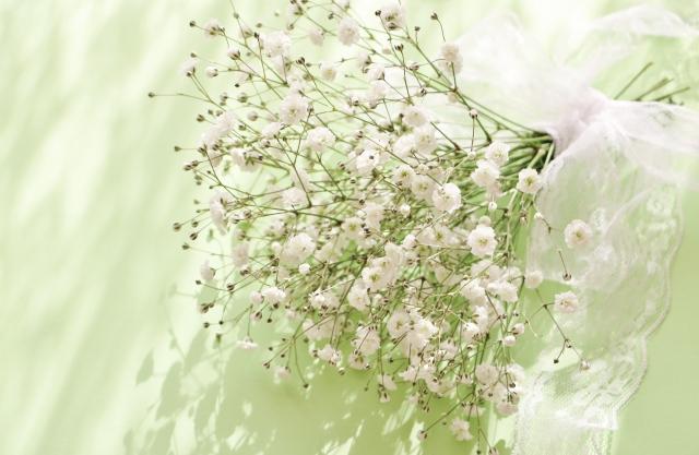 【お花屋さんの切花図鑑】  ●カスミソウ  何にでも合わせやすい万能脇役。ナデシコの仲間。  英語ではBaby's breath(赤ちゃんの吐息)。  「アルタイル」「ベールスター」など星にちなんだ品種名が多い。  #切花図鑑 https://t.co/XUaSw3QW8A