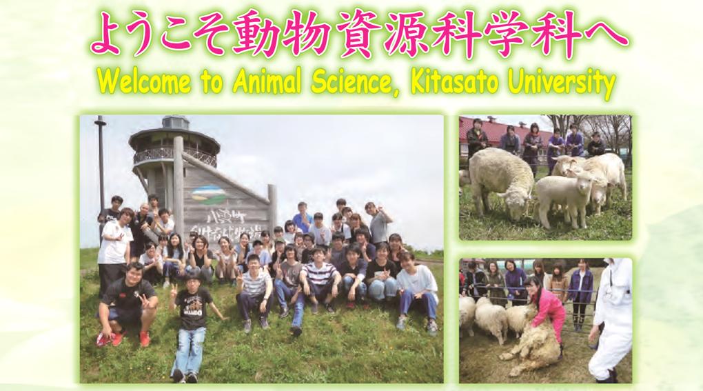 動物資源科学科