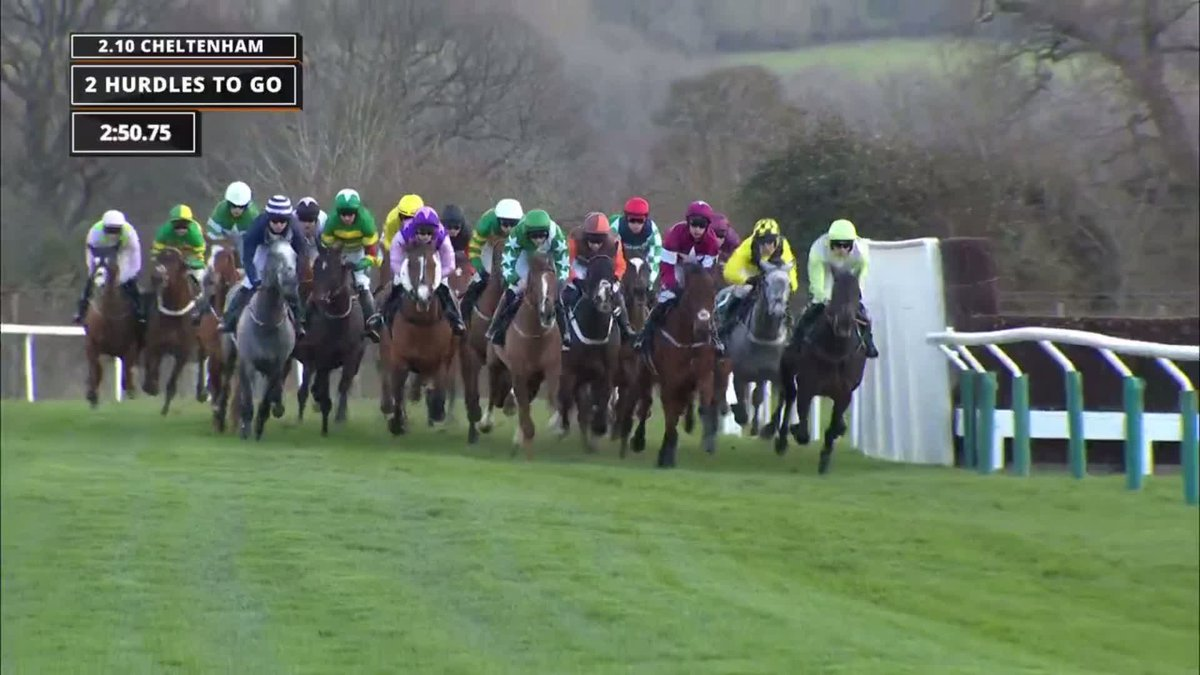 Cheltenham county hurdle betting lines komendy do minecrafta 1-3 2-4 betting system