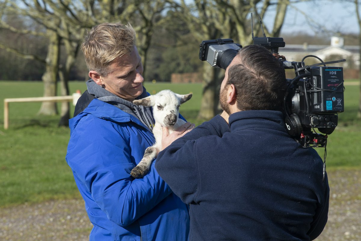 Tune in now to This Morning on ITV1 to spot our Goodwood lambs making their television debut with This Morning's vet Dr Scott Miller  @thismorning @ITV #goodwoodhomefarm #goodwood #ThisMorning https://t.co/LOqTj7rYbA