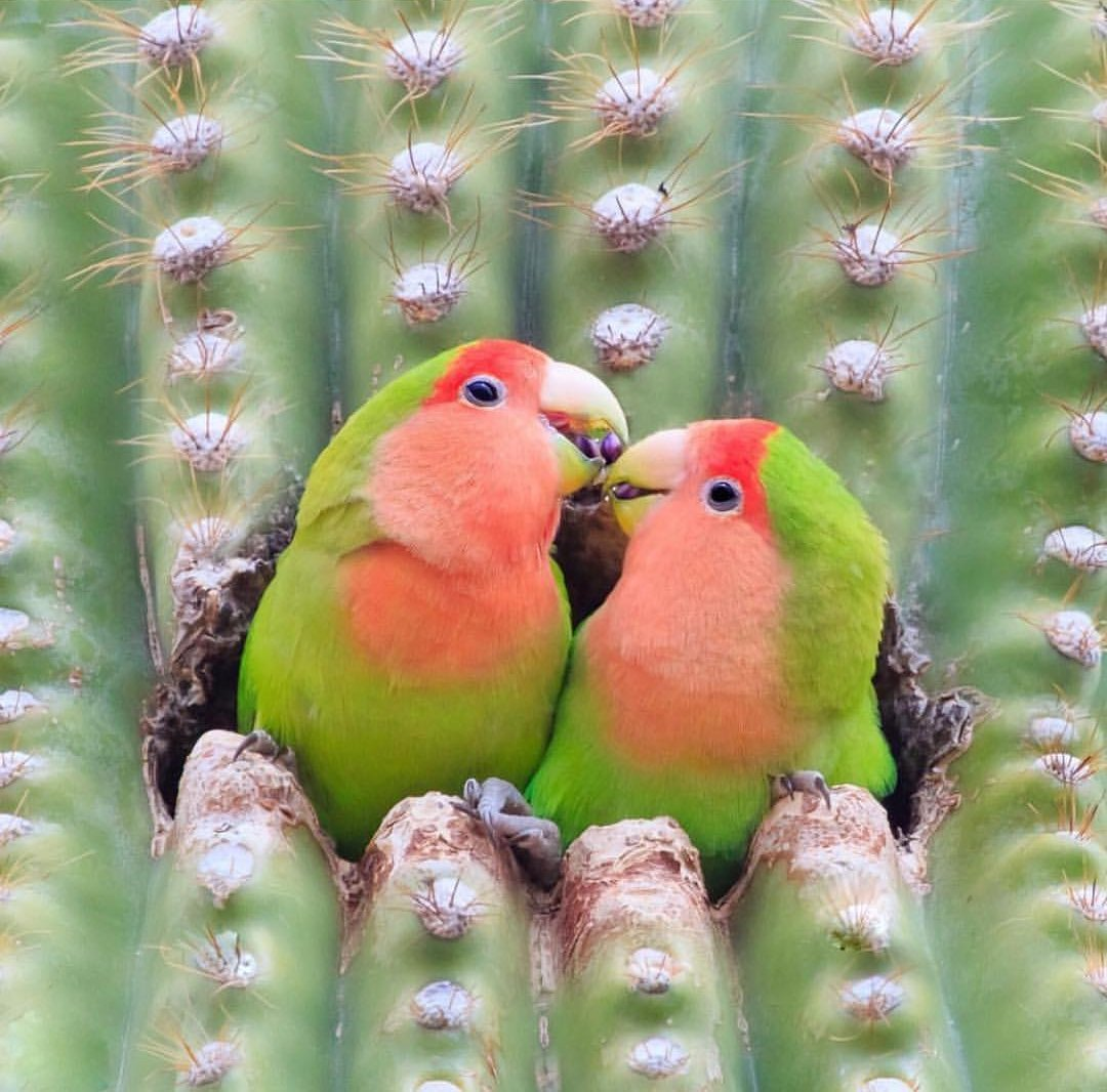 ▓▉▉▉▉▉ ● ▓▉▉▉▉ ● ▓▉▉▉ ● ▓▉▉ ● ▓▉ ● ▓ ● ╚☞#Friends ~~ #TmKindness   Have a Beautiful Day  pic.twitter.com/rtAoyXY803