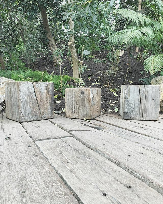 Anything made from natural materials  bit in love with these chunky wooden stools, carved from tree trunks.  . . . . . . #garden #woodpaperscissors #klys #lifeincornwall #aseasonalshift #embracingtheseason #dreckly #simplepleasures #theslowlife #th… https://ift.tt/2THc3nT pic.twitter.com/rXUsUHy6bv