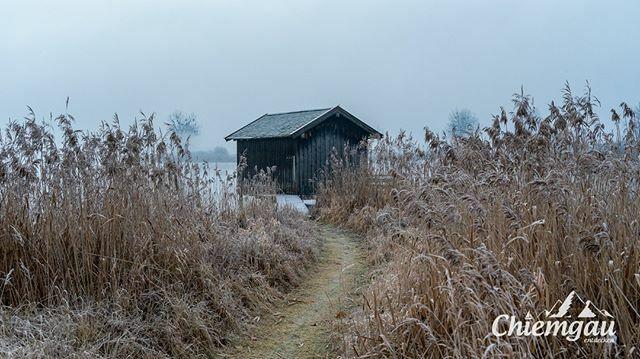 Der Winter wollte dieses Jahr hier am See nicht so Recht in Gang kommen, aber für ein paar frostige Bilder hat es am Ende irgendwie noch so gereicht...  _______________________________________  #chiemsee #chiemgau #rimsting #visualofearth #dreaming_… https://ift.tt/38B5R6opic.twitter.com/JytLz2J3Yp