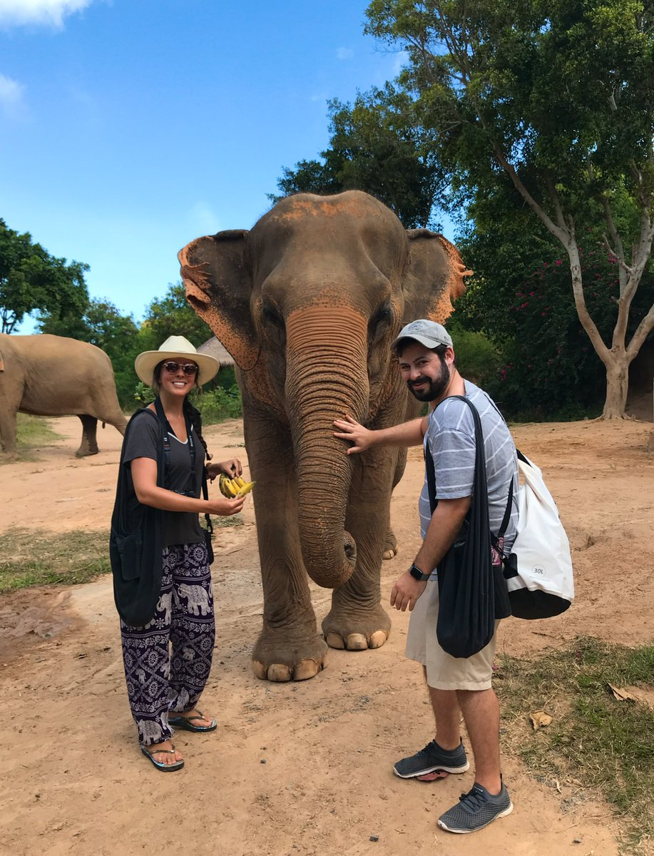 Meet my new best friend  — this sweet lady was rescued from the cruel #elephant tourism industry in Thailand and now gets to enjoy her life at this beautiful #elephantsanctuary complete with bananas and mud baths!  Highly recommend #Samui Elephant Sanctuary! pic.twitter.com/2oe5OeJrhg – at Samui Elephant Sanctuary