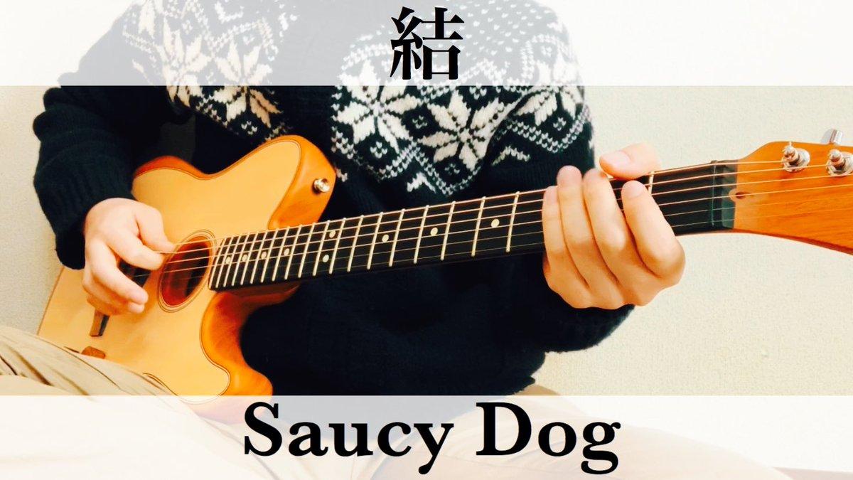 Dog 結 saucy