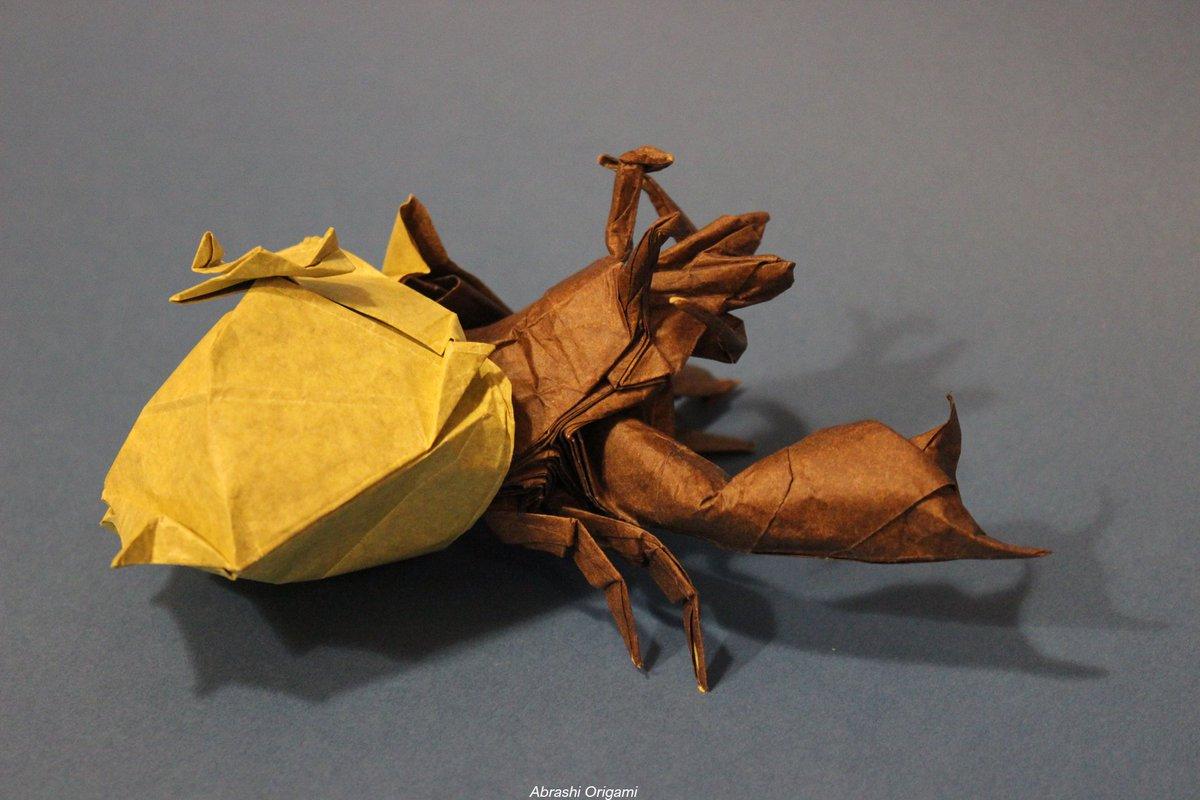 Hermit crab | 800x1200