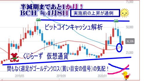 ビットコインキャッシュ解析ビットコインキャッシュは、初の半減期が丁度一か月後に迫りました!仮想通貨の他のコインですと、だいたい実施前の上昇が通例になっています。その時の状況によって、必ずではないですが、傾向としてそういう例が多いです。4月8日頃~半減期予定です。