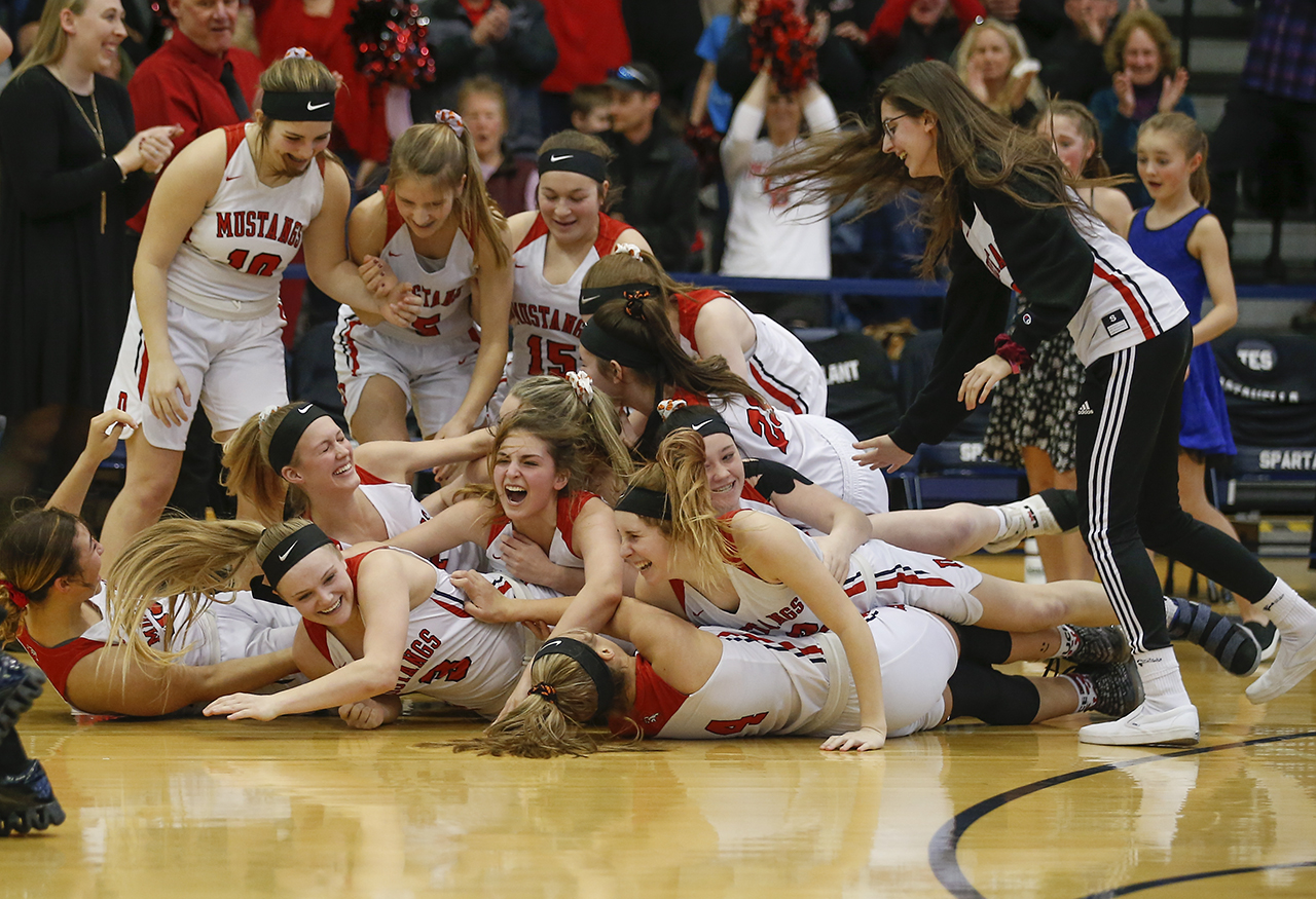 Pal-Mac falls to Dansville in B1 Sectional Championship