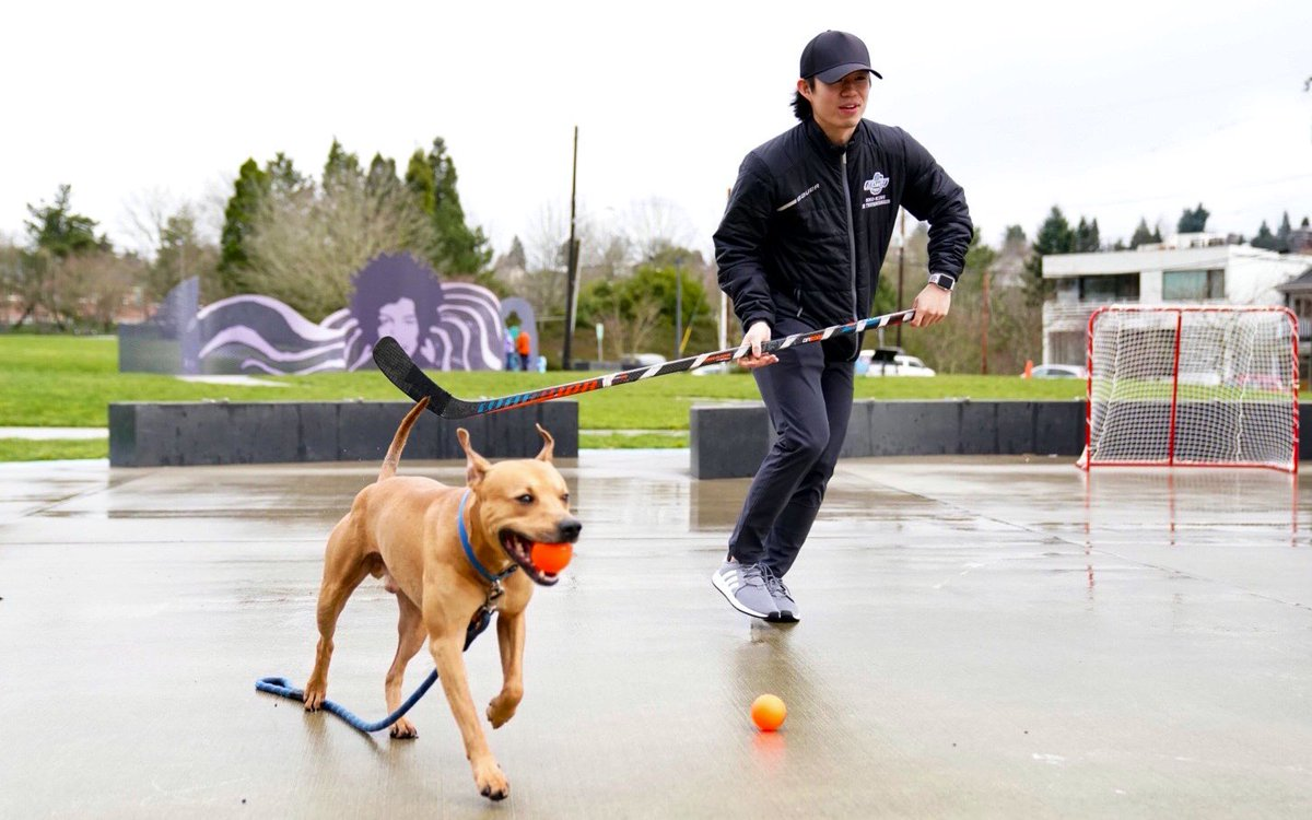 Doggos love hockey too 🥺🥺🥺