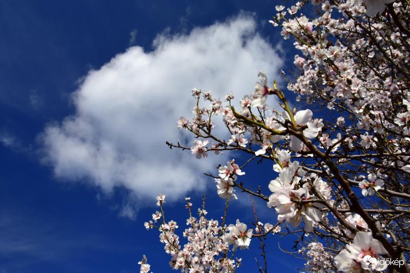 🌥 Alapvetően kellemes idővel búcsúzik a hét, a legtöbb helyen hosszabb időszakokra kisüt a nap.  De néhol azért egy-egy zápor is kialakulhat👉 Fotó: Lőrincz Edit