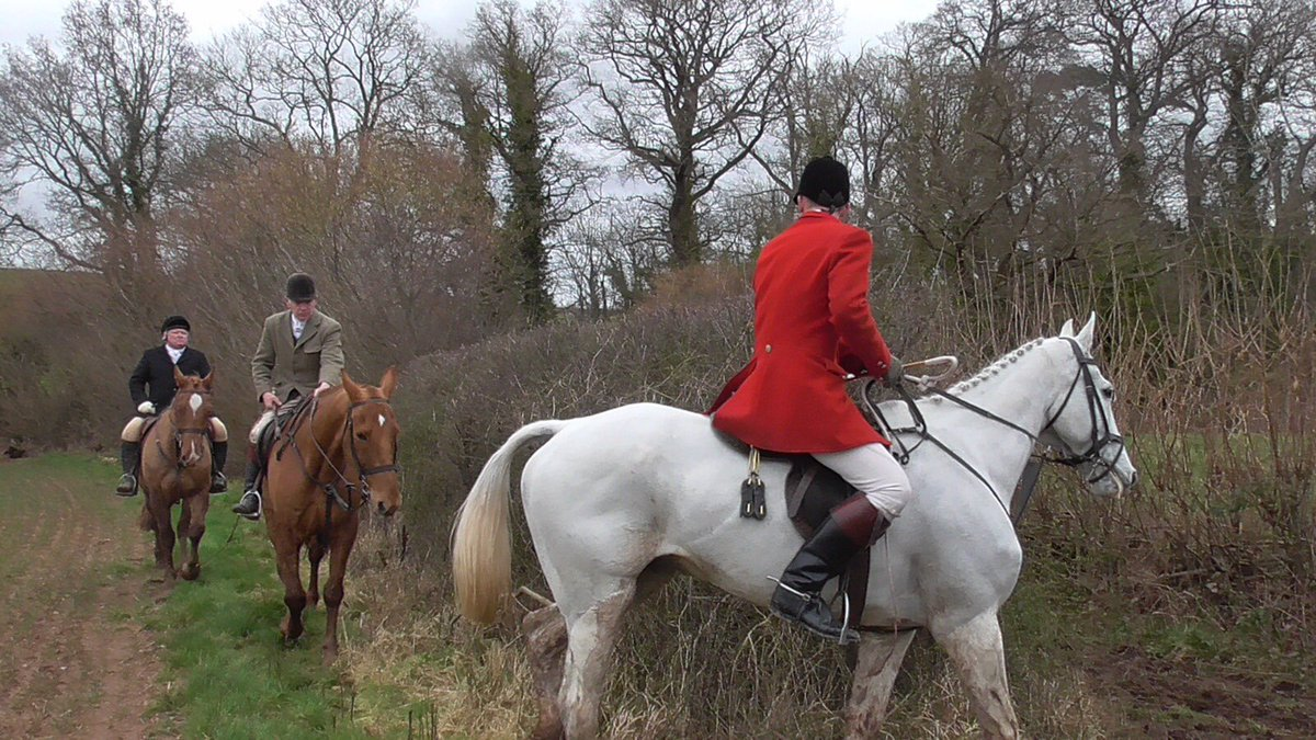 Hit report on a good day sabbing the South Shropshire Hunt yesterday m.facebook.com/story.php?stor…
