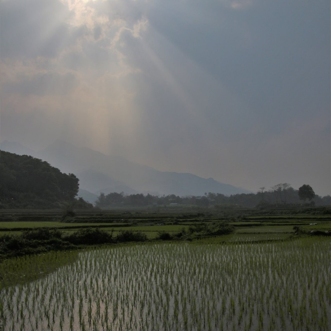 #ninhbinh #tamcoc #trangan #travel #vietnam #vietnamese #travelvietnam #instanam #vietnamtravelerspic.twitter.com/1lsFjngnPq