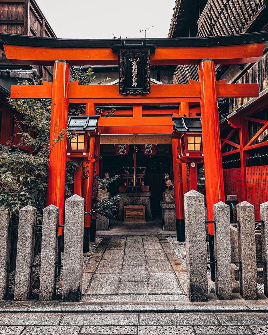Hidden Shrines of Kyoto   https://www.instagram.com/p/B7qVhNHg-Gy/?igshid=1xtz7q688s3x6…  #kyoto #kyotojapan #Japan #japon #kioto #shrine #temple #japanese #torii #travel #japantrip #travelingpic.twitter.com/Gm1j7dxVSt