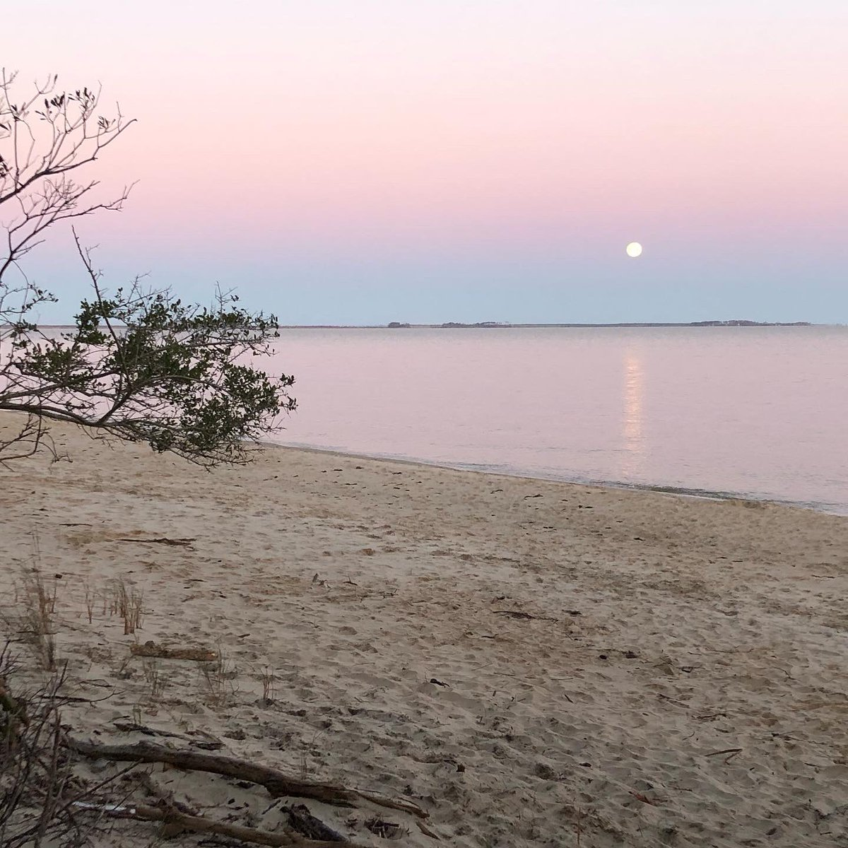 Nice moon view this morning from the Etheridge Point beach at the end of Pear Pad Road.