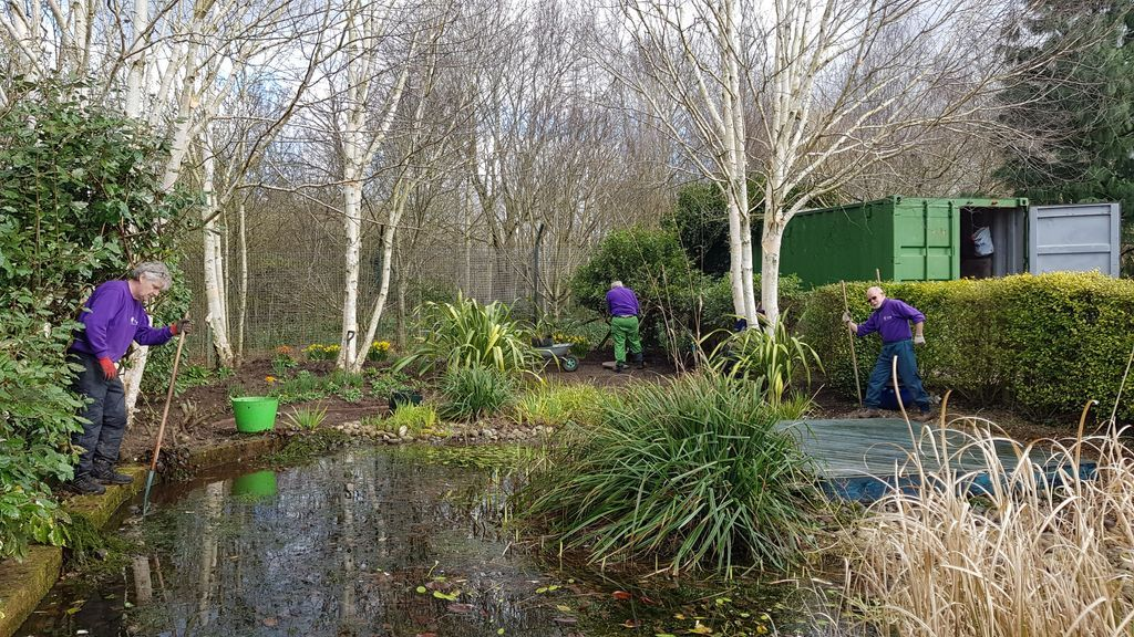 Our wonderful volunteers in Birmingham clearing out our pond and preparing the garden for spring.