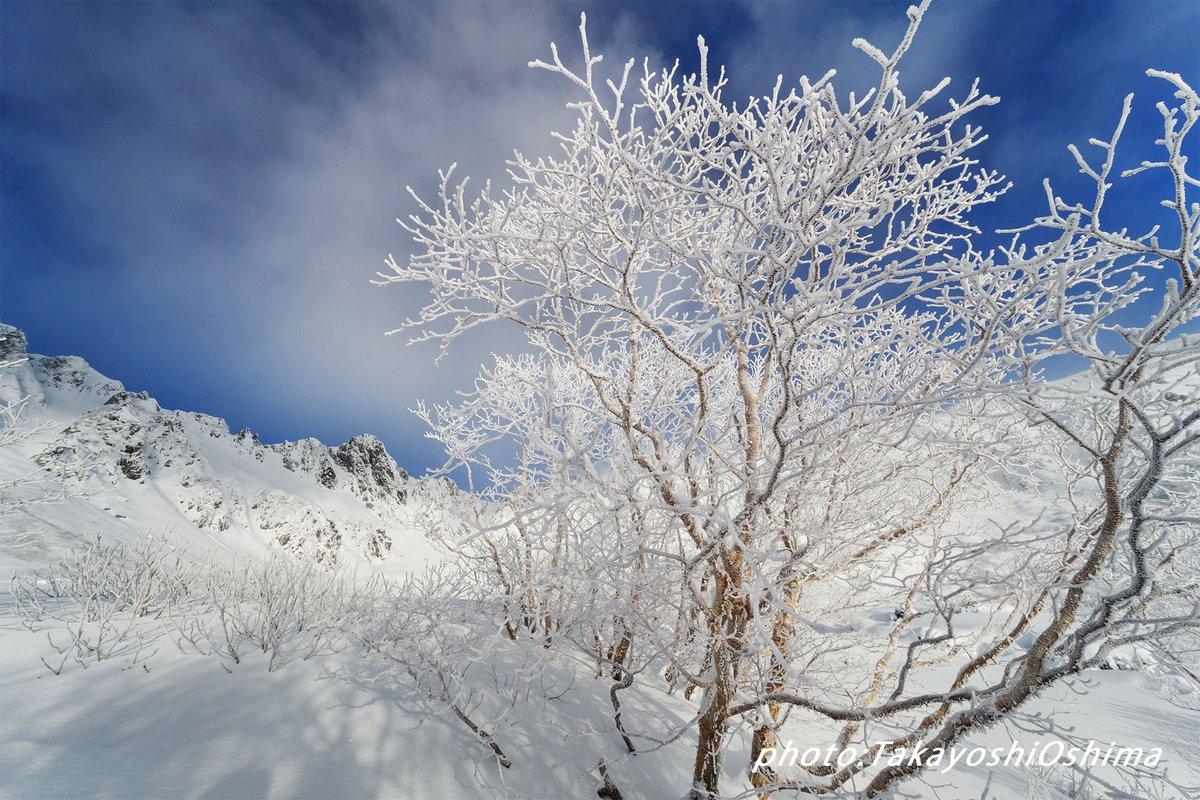 LAOWA 12mm F2.8 ZERO-Dの世界 軽くて小さくて使い勝手が良い感じ 今年は沢山使ってみよう 1、樹氷と宝剣岳 2、仁科三山と日傘 3、日本一の溶岩流と星の軌跡 4、鈴鹿の森枝垂れ梅 #LAOWA #CANON #超広角の世界 #MFレンズ #山岳風景 #ラオワ #レンズ https://t.co/8FWcO4R2oc