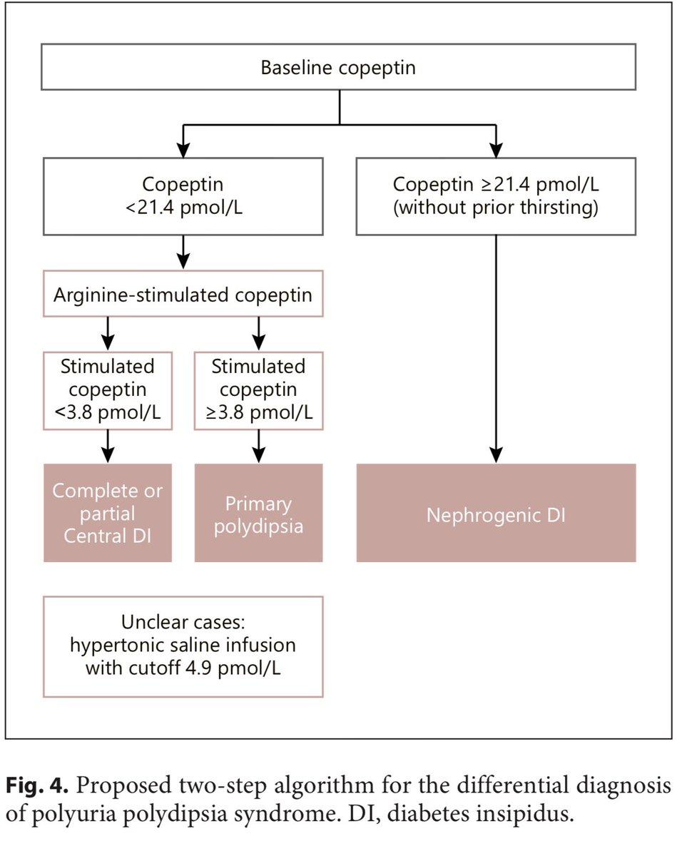 diagnósticos diferenciales para diabetes