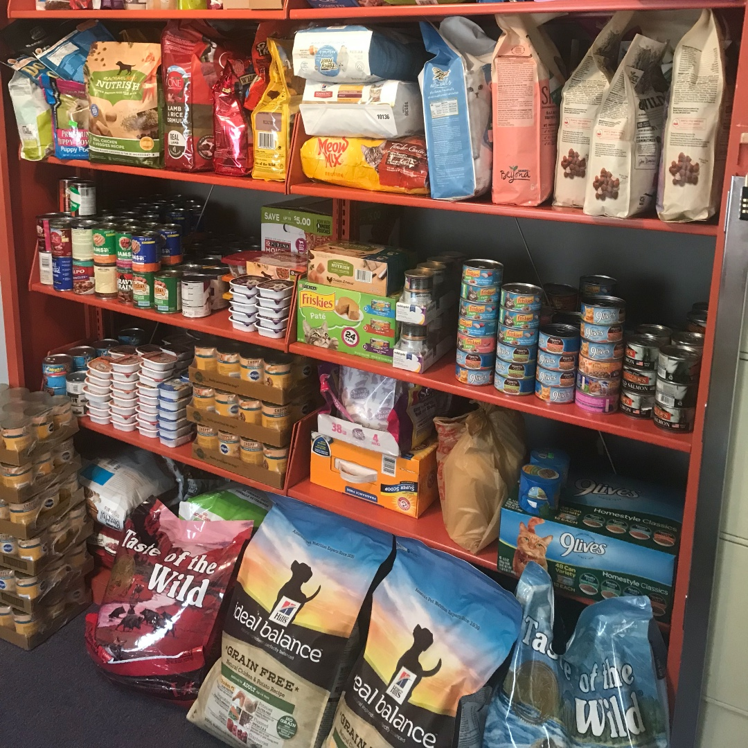 We've set up a new Amazon wishlist to make it easy peasy to donate to the #PCSPCA #Pet #Pantry.  The shelves are getting very bare.  Thanks for your generosity.    https://t.co/roWTFqgrLb https://t.co/WWX2V55BK8