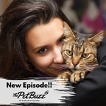 Image for the Tweet beginning: New episode! Protecting #Pets Now,
