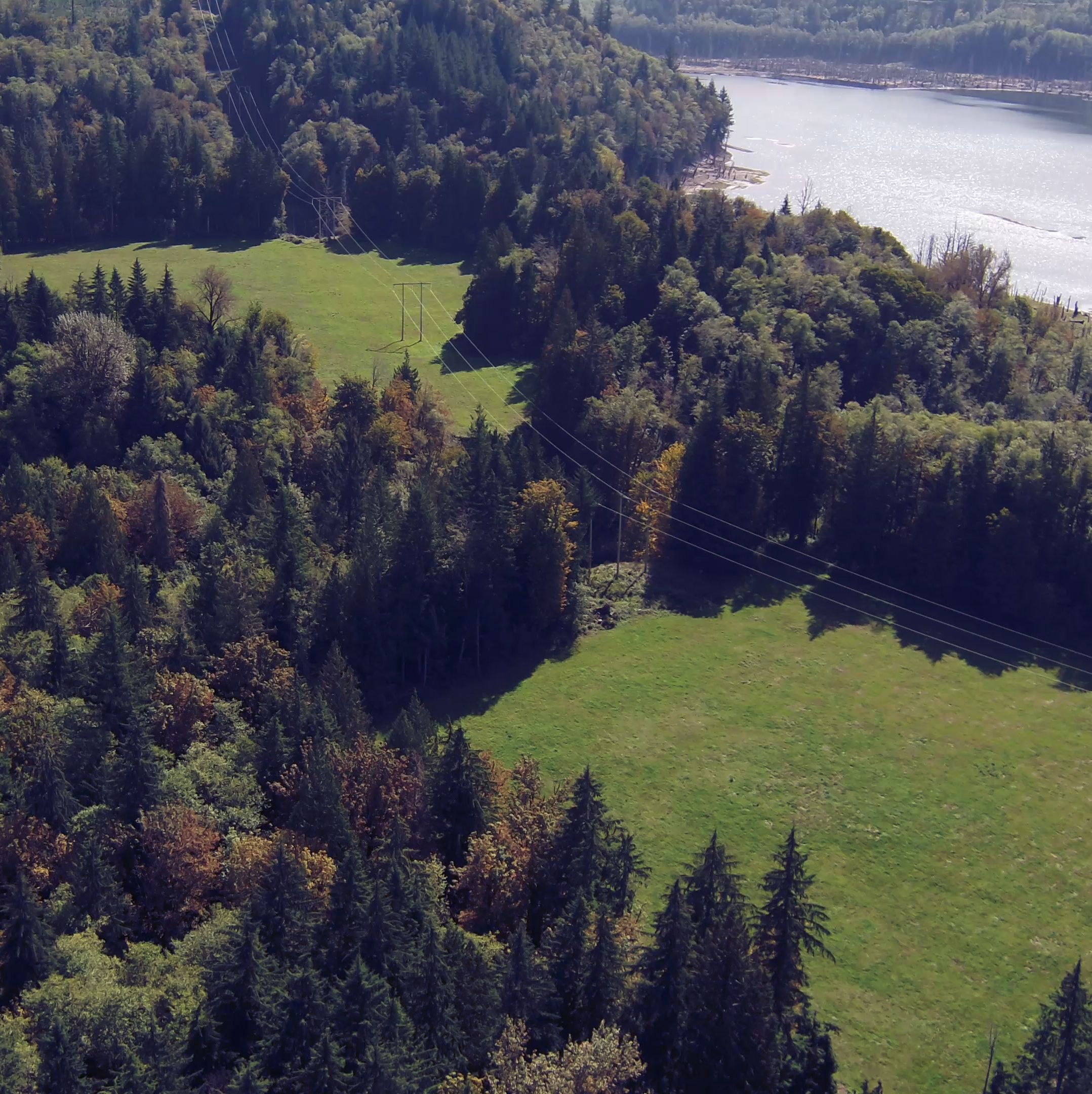 Tacoma Public Utilities protects habitat and sourcewater within the Green River Watershed